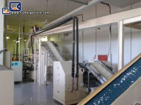 Cylinder and Duplex extruder vacuum Homogenizer